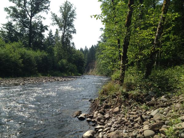 EC Creek