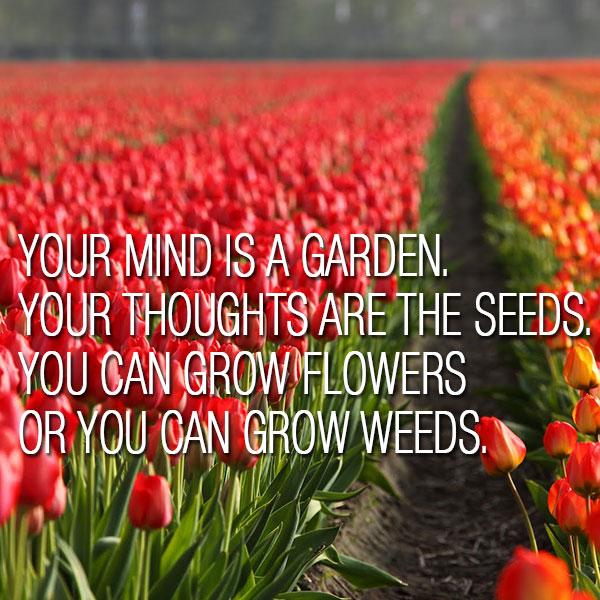 quote-garden